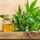 Many new findings though CBD Oil to relax is still most common